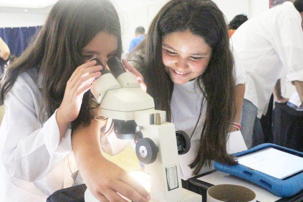 Olhar científico para projetos de Iniciação Científica no Sidarta